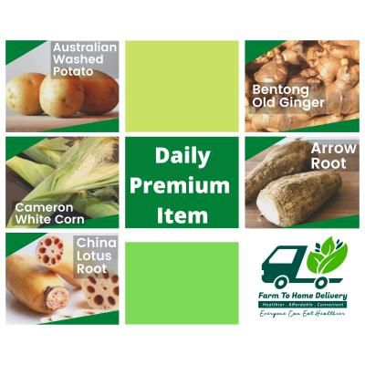 Premium Daily Items